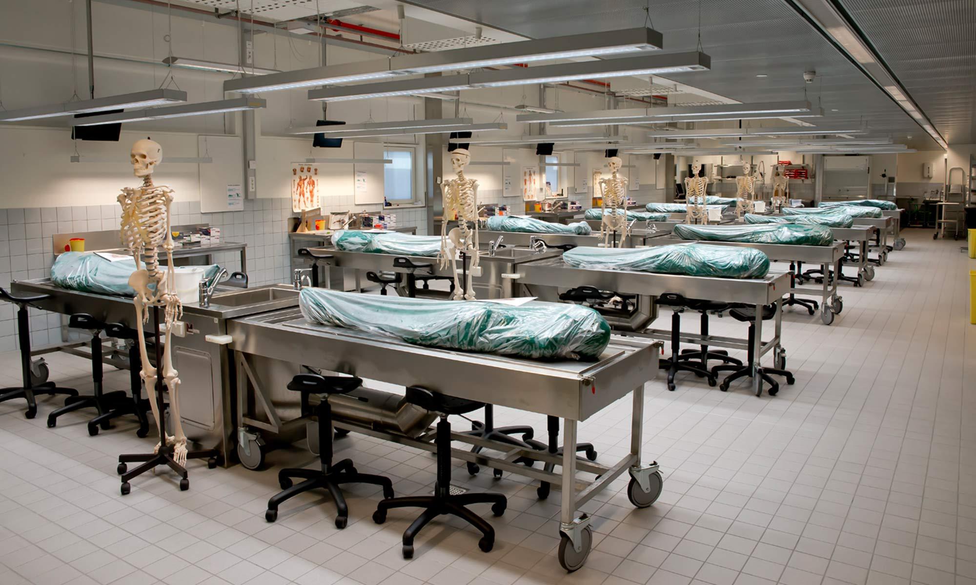 Präpariersaal Anatomie der Universität Trondheim, Norwegen